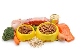 different types of cat food