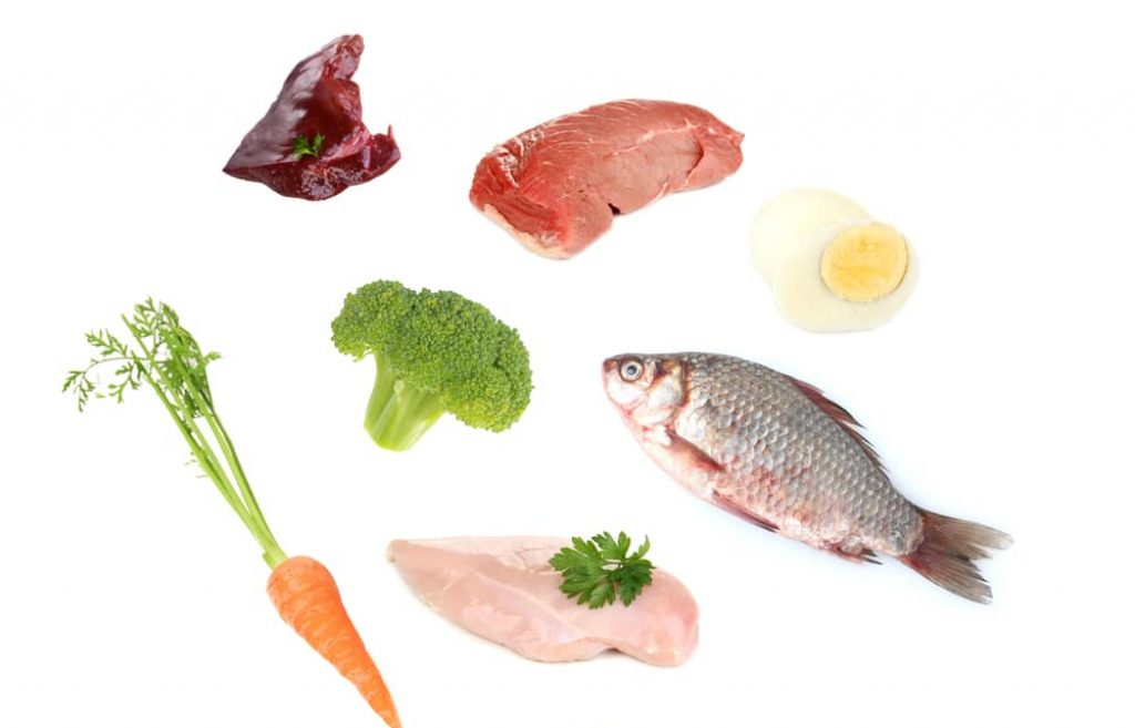 homemade cat food ingredients