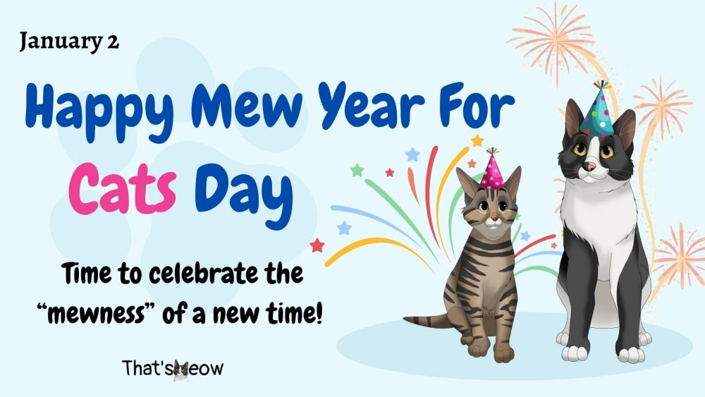 Happy Mew Year For Cats day thatsmeow