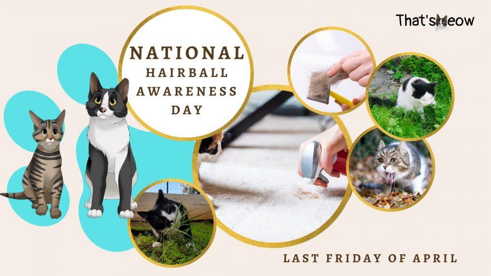 National Hairball Awareness Day thatsmeow