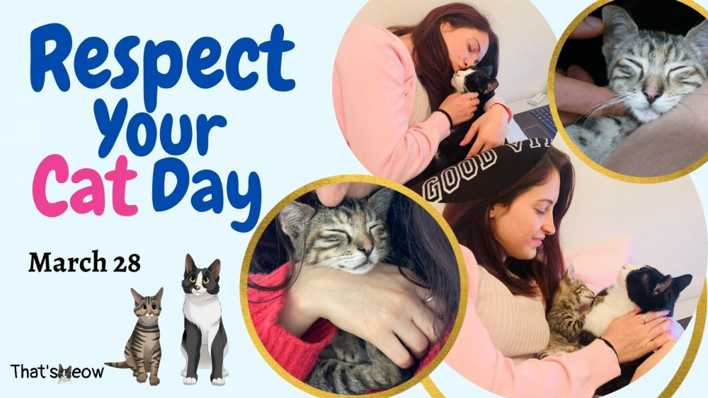 Respect your cat day thatsmeow