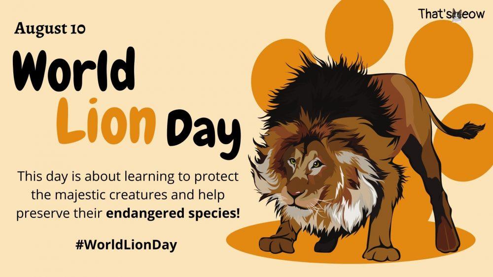 World Lion Day thatsmeow