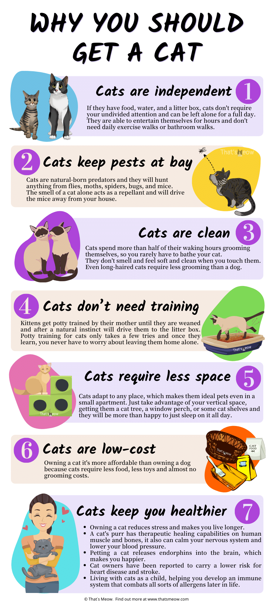Reasons to get a cat